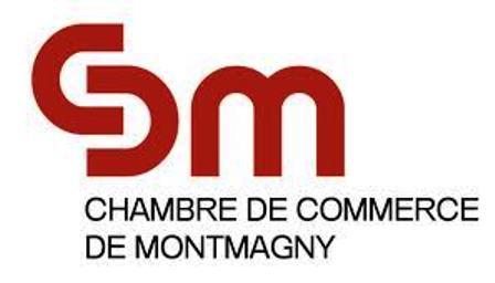 Nouvelle directrice g n rale la chambre de commerce de for Chambre de commerce biarritz