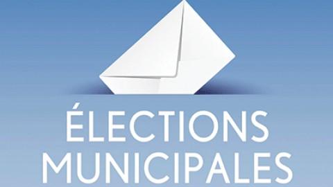 Portrait des élections municipales sur la Côte-du-Sud